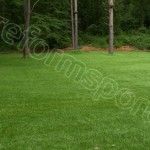 Dekoratif Çim, 3mm dekoratif çim, mm suni çim, senteitk çim resmi, spor tesisleri suni çim,
