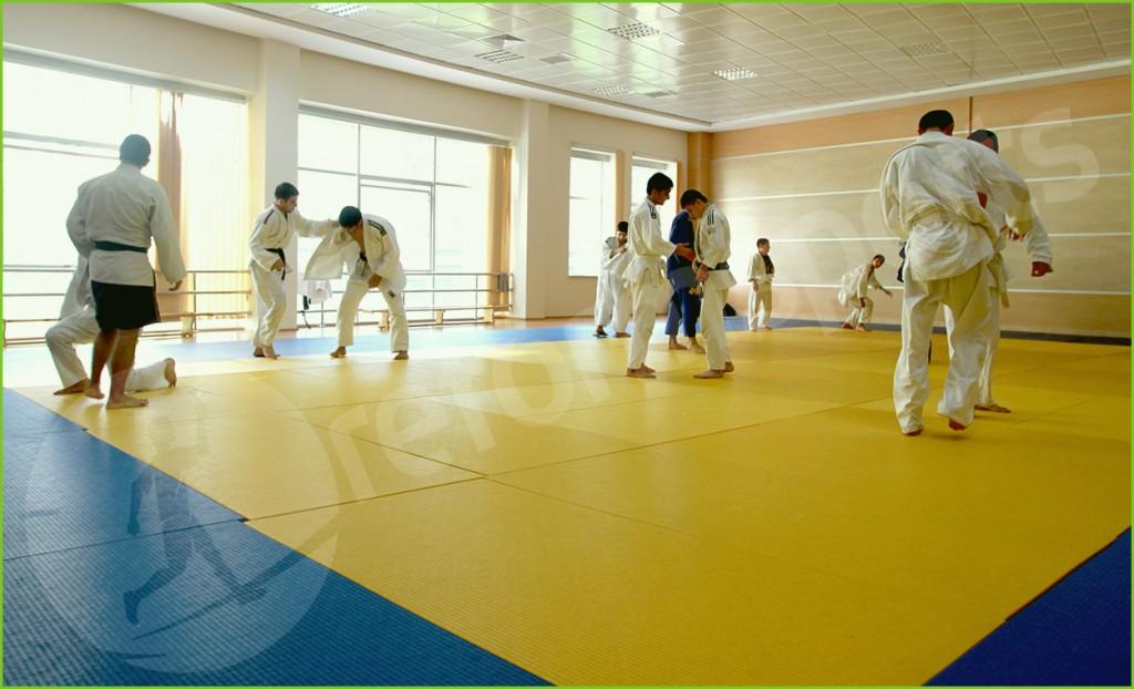 serhedçi idman olimpiya merkezi, azerbaycan karete, serhedçi spor,